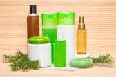 Natural hair care cosmetics and accessories — Stock Photo