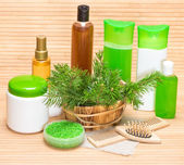 Natural cosmetics and accessories for hair health and beauty — Stock Photo