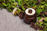 Organische huid zorg crème — Stockfoto