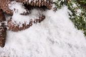 Snö — Stockfoto