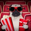 Dog at the movies — Stock Photo #58182091