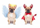 Devil and Angel  — Stock Photo
