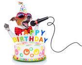 Grattis på födelsedagen hund — Stockfoto