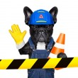 Warning sign dog — Stock Photo #79688914