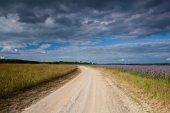 Dusty road between fields — Stock Photo