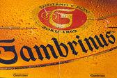 Beermats from Gambrinus beer — Stock Photo