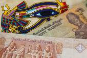 Typical Egyptian papyrus and different banknotes — Stock Photo