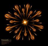 Fireworks flower orange vector — Stock Vector