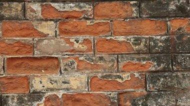 ściana — Wideo stockowe