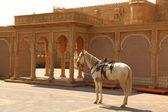 Vintage fort Rajasthan Hindistan — Stok fotoğraf
