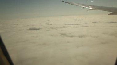 Widok z lotu ptaka — Wideo stockowe