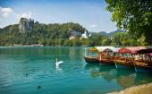 Boats on Lake Bled horizontal with swan — Stock Photo