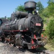 Locomotive of narrow gauge railway — Stock Photo #51838587
