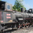 Locomotive of narrow gauge railway  — Stock Photo #51838591