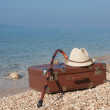Vintage Leather suitcase on the beach — Stock Photo #51839573