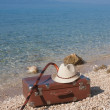 Vintage Leather suitcase on the beach — Stock Photo #51839577