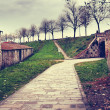 Old fortification wall around Lucca town, Italy — Stock Photo #71621997