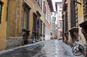 老街巷的卢卡,意大利 — 图库照片