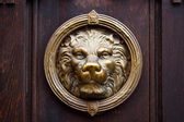 Metal lion on wooden door, Italy — Stock Photo