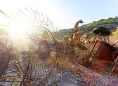 Old hay rake at sunrise, Italy — Foto de Stock