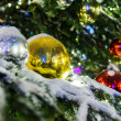 Red and yellow Christmas balls on branch — Stock Photo #61246643