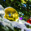 Red and yellow Christmas balls on branch — Stock Photo #61246653