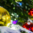 Red and yellow Christmas balls on branch — Stock Photo #61246657