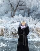 Winter landscape, river under the ice — Stock Photo