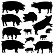 Pig silhouettes — Stock Vector #65748115