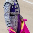 Bullfighter suit — Stock Photo #51927099