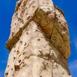 Climbing wall — Stock Photo #53110533