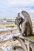 Gargoyle observes Paris — Stock Photo