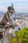 Notre Dame gargoyle — Stock Photo