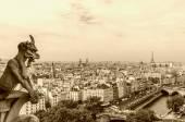 Paris çirkin yaratık — Stok fotoğraf
