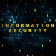 Protection concept: Information Security on Digital — Stock Photo #70526935