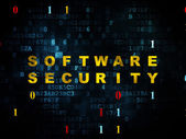 Privacy concept: Software Security on Digital background — Stock Photo