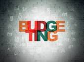 Finance concept: Budgeting on Digital Paper background — Stock Photo