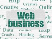 Web design concept: Web Business on wall background — Fotografia Stock