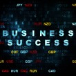 Finance concept: Business Success on Digital background — Stock Photo #79949844