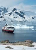 Tourist ship that stands in the strait near the penguin colony — Stock Photo