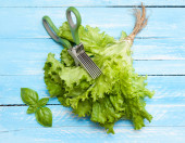 Green leaf of lettuce and basil. — Stock Photo
