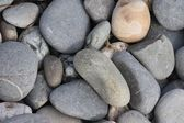 Stones and rocks on a sandy beach background — Photo