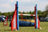 A brightly coloured dog agility sport jump — Stock Photo