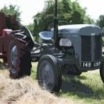 Old vintage little grey fergie ferguson tractor farm equipment — Stock Photo #65673339