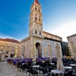 The Cathedral of St Lawrence in Trogir — Stock Photo #53319239