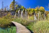 Gehweg durch Paradise in Plitvicer Seen — Stockfoto