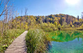 Plitvice lakes national park boardwalk — Stock Photo