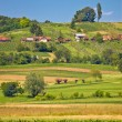 Agricultural countryside landscape vertical view — Stock Photo #59193773