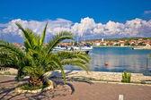 Bibinje village in Dalmatia waterfront view — ストック写真