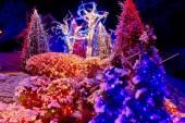 Luzes de Natal no parque — Fotografia Stock